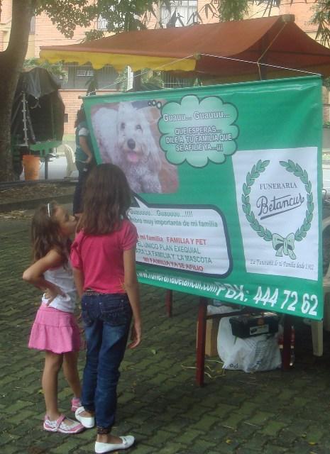en Nuestro portafolio de sevicios: Servicios exequiales para mascotas